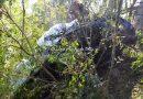 Em acidente com vitima fatal na ERS 569 sobrevivente e resgatado apos dez horas preso as ferragens