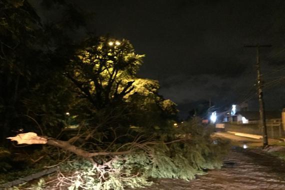 Previsão do tempo no RS: Estado tem alerta de temporal e vento de até 100 km/h